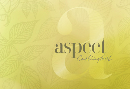 Aspect Property